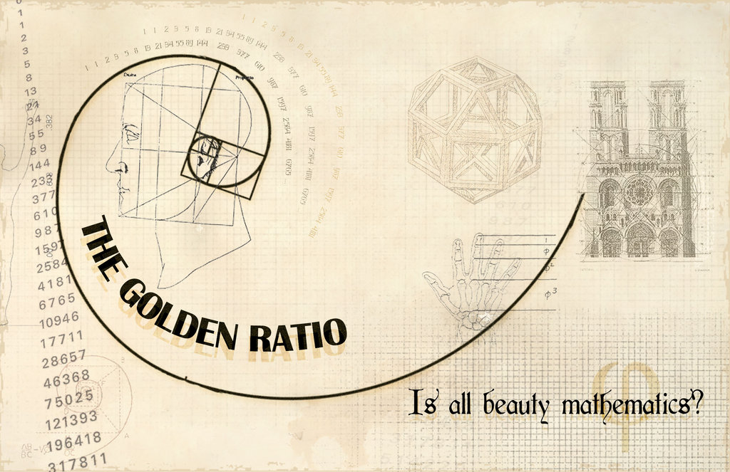 The_Golden_Ratio_by_crocusgirl- deviant art